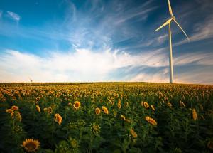 Energías renovables: Subvenciones autonómicas