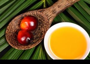 Oli de palmell: consum, mites i realitat