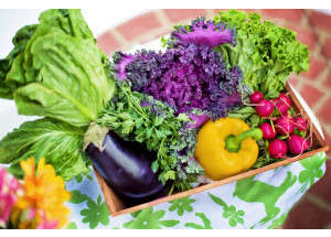 Las diferencias entre caducidad y consumo preferente en los alimentos, según la OCU