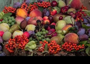 Como sacar partido a las frutas y verduras del otoño