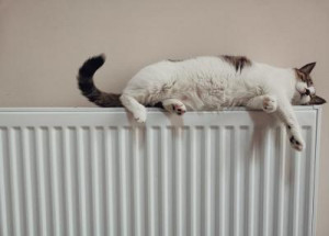 Purgar el radiador es clave para mejorar el rendimiento de la calefacción y reducir el consumo de energía